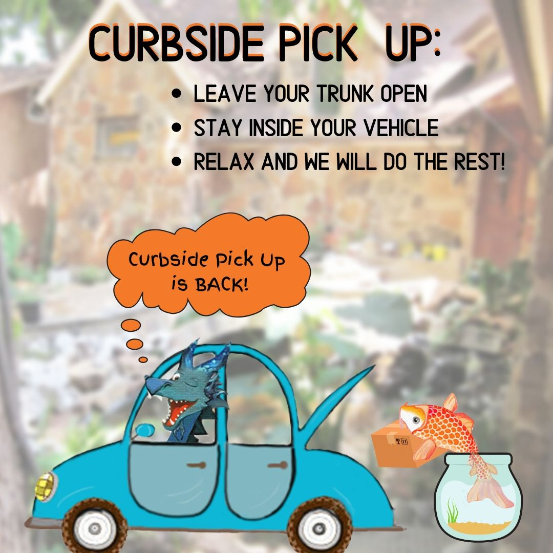 Curbside Pick Up is BACK!